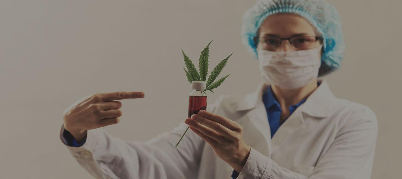Buy Cannabis Strain Online